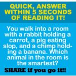 take the real IQ test online free!