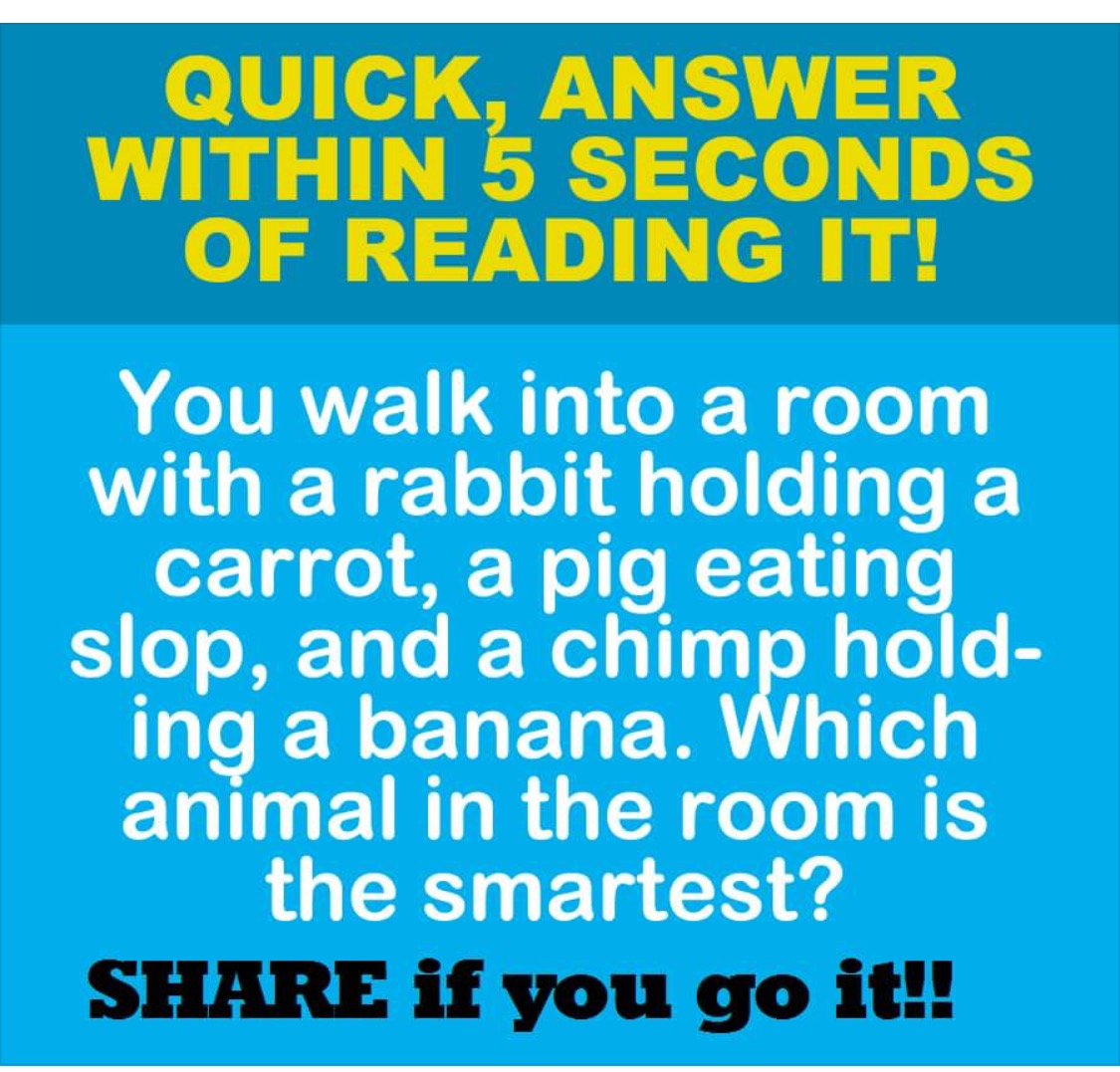 To Prove Your Iq Take The Real Iq Test Online Free